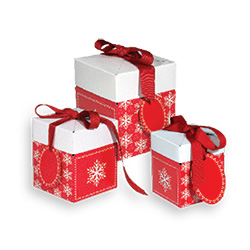 Presents Please Ribboned Pop-Up Boxes