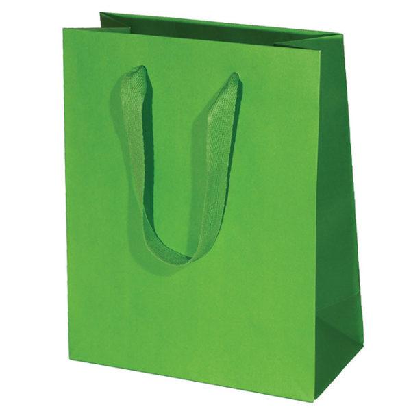 Kiwi Manhattan Bag