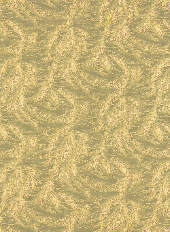 Pale Gold Akita Wrapping Paper